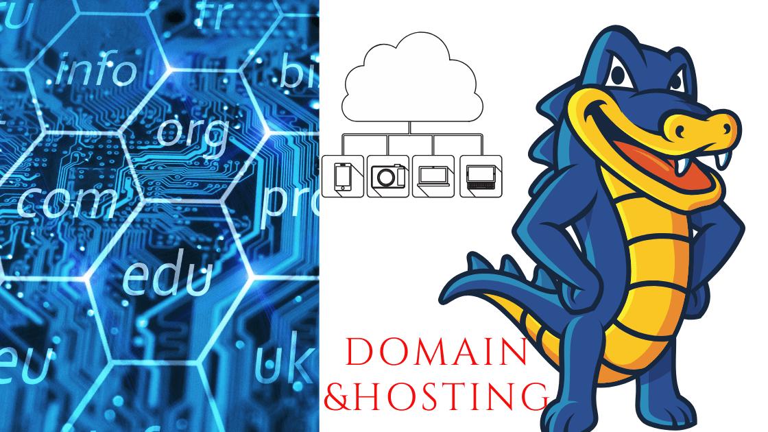 domain & hosting in nepal